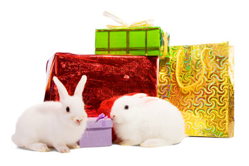 Two  rabbits with gifts