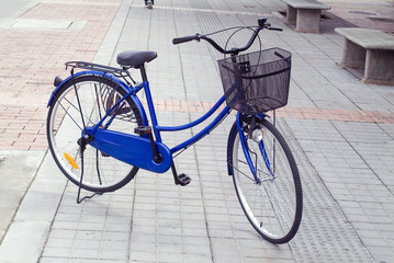 Bicicleta  azul – Blue bicycle