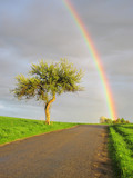 Fototapety Rainbow's end. Beautiful view on rainy and sunny landscape.