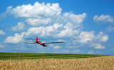 Glider landing on field airport in beautiful summer weather.