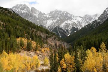 Autumn valley Kananskis Alberta