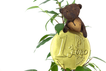 ficus ,one euro coin and Teddy Bear  isolated on white