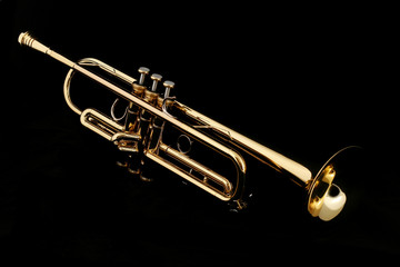 gold trumpet in night