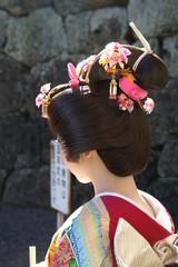 女性 日本女性 着物 日本髪 後ろ姿