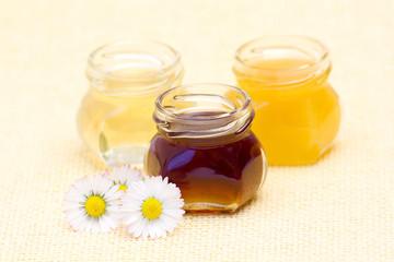 honey and daisies