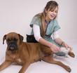 jeune vétérinaire qui soigne un boxer