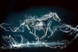 horse water storm