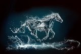 water horse 2