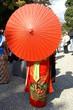 女性 日本女性 着物 和傘 日本髪 後ろ姿