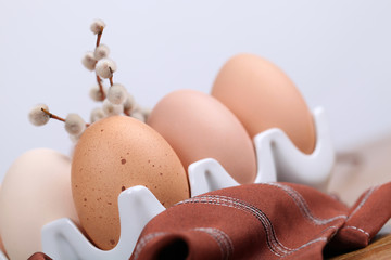 Brown chicken eggs and catkins