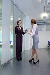 Businesswoman shouting on each other