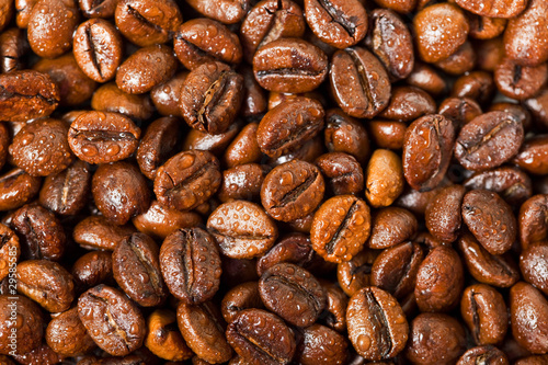 wet coffee beans