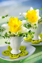 narcissi in eggcups