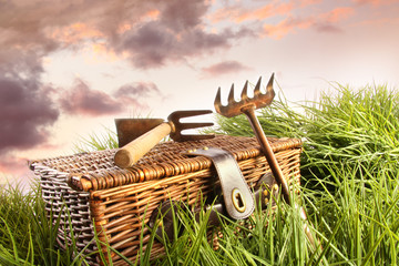 Wicker basket with garden tools in grass