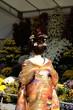 女性 日本女性 着物 花嫁衣装 鬘 日本髪 後ろ姿