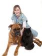 animaux chez le vétérinaire