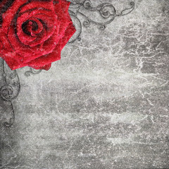 Grunge background with red rose