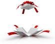 Open gift box - 29627173