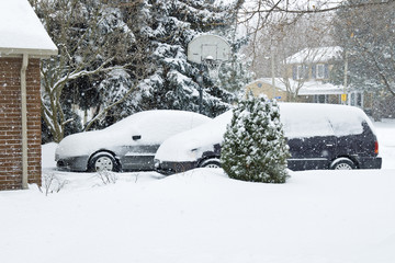 Snow Storm in Suburbia