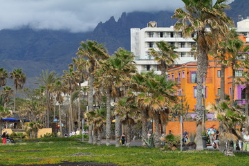 Tenerife Islas Canarias