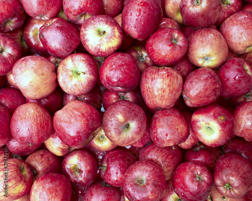 fresh wet apples, natural background