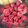pink rose flowers bouquet, natural background