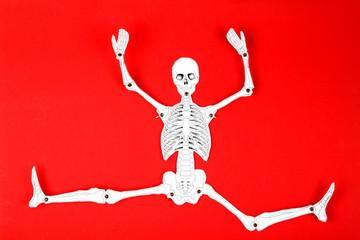 Hampelmann-Skelett