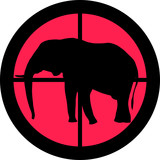 In the Scope Series – Elephant poster