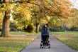 A mother standing with a buggy in the park
