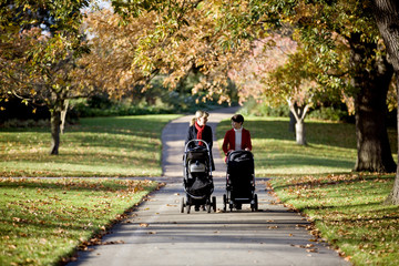 Two mothers pushing their buggies in the park, talking