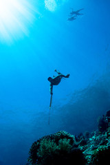 Silhouette of a indonesian hunter in blue sea