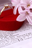 Bible open to 1 Corinthians 13 and engagement ring poster