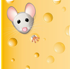A mouse eating a piece of cheese