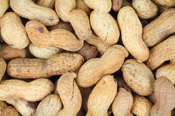 Hard Shelled Peanuts Close View
