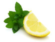 Fresh mint with slice of lemon