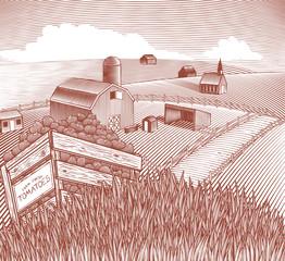 Produce Crate Landscape