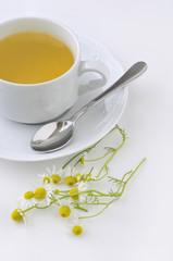 Taza blanca de manzanilla con flores frescas