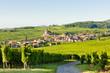 Leinwanddruck Bild - Hunawihr, Alsace, France