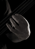 playing fretless electric bass guitar; harmonics poster