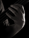 playing fretless electric bass guitar; harmonics, poster