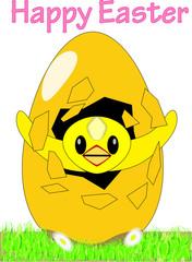 Easter chick bursting from Easter egg (HAPPY EASTER!)