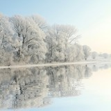 Fototapety Frosty winter trees against a blue sky with reflection in water