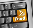 "Keyboard Illustration ""Feed"""