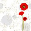 Abstract red poppy greeting card