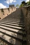 Restored Steps of Great Wall Beijing Mutianyu poster