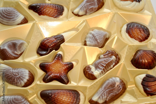 Sea Creature Chocolates