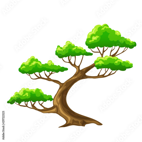 Cartoon vector tree bansai with white background