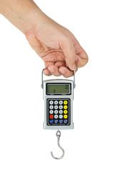 Hand hold digital fishhook scales
