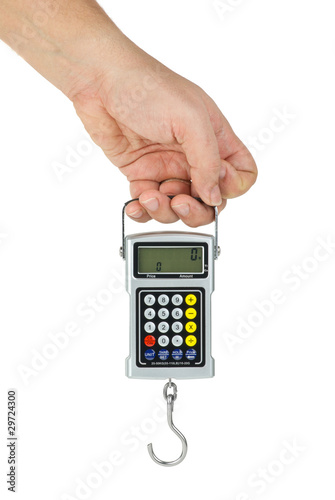 Hand hold digital fishhook scales
