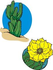 Southwest motif, cacti